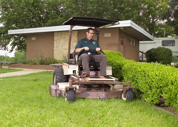 Cura professionale del giardino
