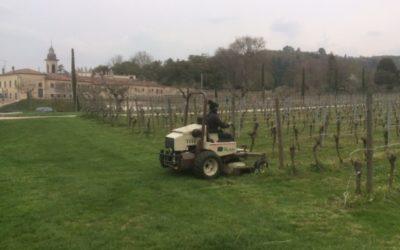 Viticoltura sostenibile con i macchinari F.lli Bognoli